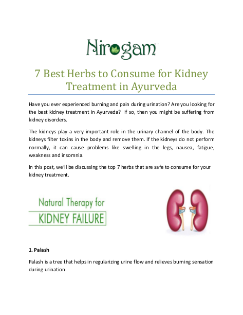 7 Best Herbs to Consume for Kidney Treatment in Ayurveda